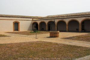 Il prato su cui emerge il pozzo dell'originaria cisterna scavata nella roccia viva nel cortile dell'antiquarium del museo del Baglio Florio nel parco archeologico di Selinunte.
