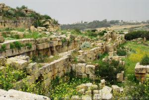 Ruderi della cinta muraria dell'acropoli.